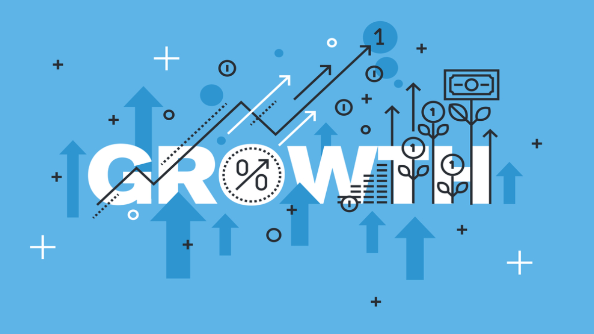 Growth strategies - which one to choose?   AMIGAMAG